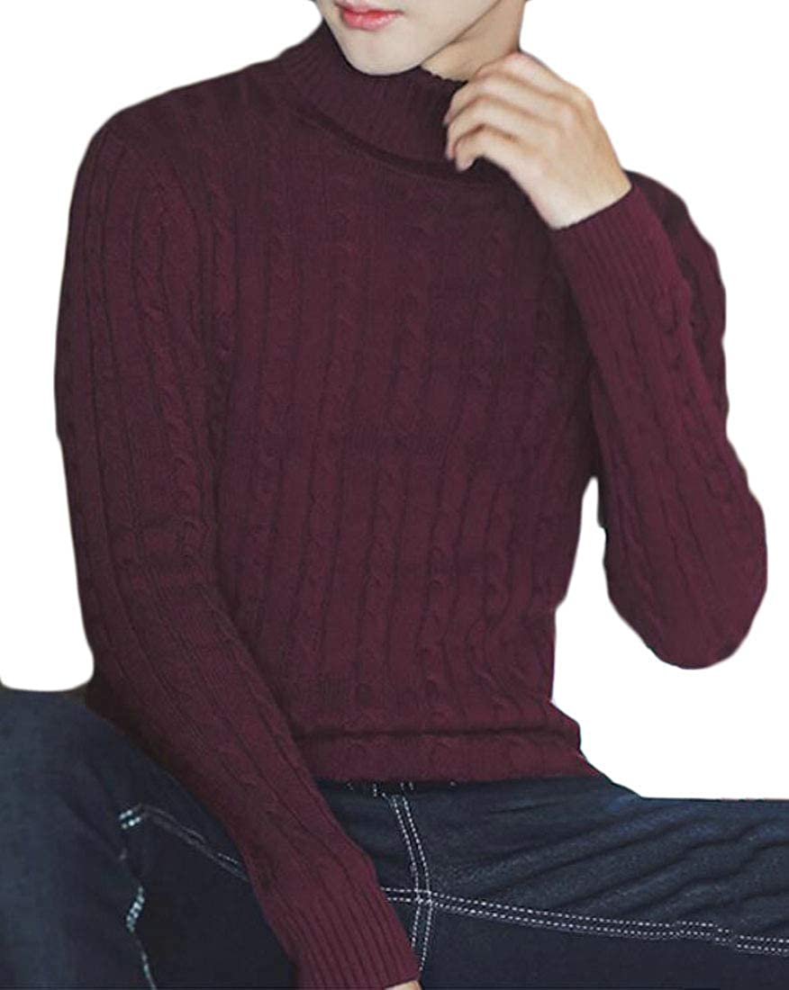 Pivaconis Mens Casual Cable Knit Turtleneck Pullover Fall Jumper Sweater