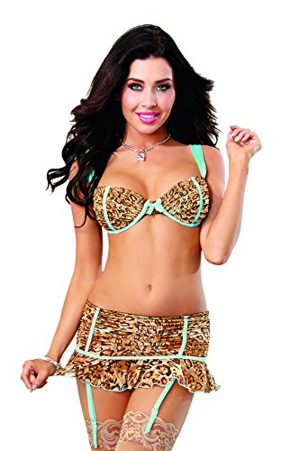(Dreamgirl Women's Sexy Exotic Leopard Mesh Bra and Flirty Garter Skirt, Medium)