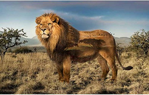 Lion - Panel - Call of The Wild Digital Print - 26