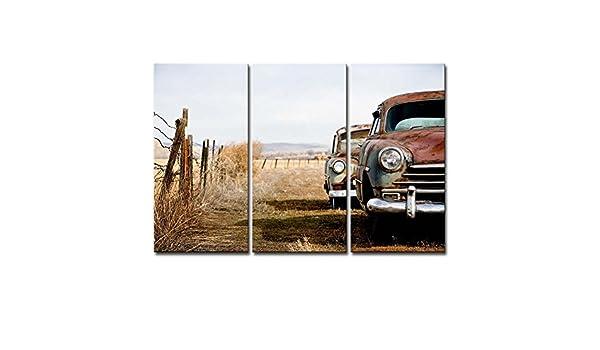 3 Panel marrón decorativo pintura Old coche abandonar coche en el salvaje Retro Diseño Prints en lienzo la imagen coche fotos aceite para decoración de hogar moderno decoración de la impresión: Amazon.es: