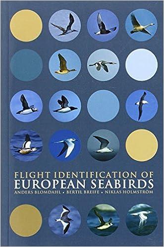 Book Flight Identification of European Seabirds (Helm Identification Guides) by Anders Blomdahl (2007-05-31)