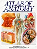 img - for Atlas of Anatomy by CASEY HORTON (EDITOR), TREVOR WESTON (INTRODUCTION) TREVOUR WESTON (EDITOR) (1997-05-03) book / textbook / text book