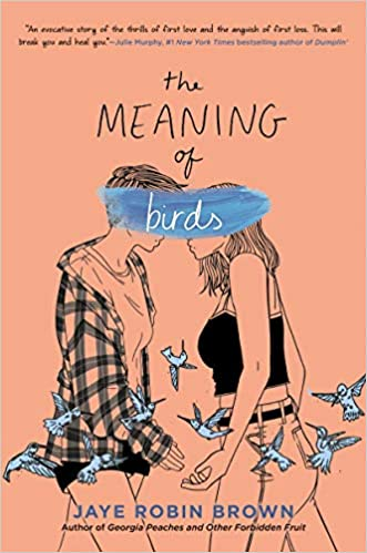Amazon The Meaning Of Birds 9780062824448 Jaye Robin Brown