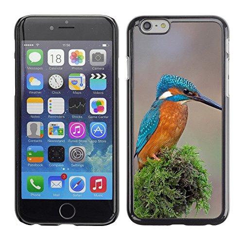 "Premio Sottile Slim Cassa Custodia Case Cover Shell // F00001266 oiseau // Apple iPhone 6 6S 6G 4.7"""
