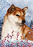 Shiba Inu Red- Best of Breed Winter Berries Large Flag