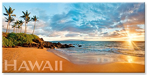 - Panoramic Hawaiian Art Collectible Refrigerator Magnet - Wailea Dreams by Michael & Monica Sweet