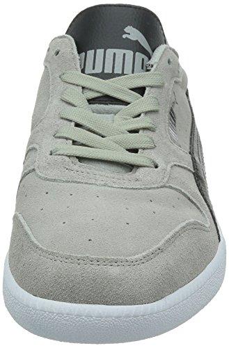 Puma Unisex Sneaker Icra Trainer SD Low-Top Grau (Limestone Grey/Black)