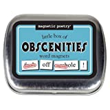 Magnetic Poetry MP3708 Little Box of Word Magnets: Obscenities Learning Accessories