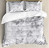 Marble Duvet Cover Set Queen Size by Ambesonne, Granite Surface Pattern with Stormy Details Natural Mineral Formation Print, Decorative 3 Piece Bedding Set with 2 Pillow Shams, Light Grey Dust