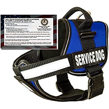 "barkOutfitters Service Dog Vest Harness + 50 ADA Info Cards Kit (Blue, (20"" - 24"") Girth"