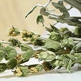 Greek Mountain Tea %282 ounce%29