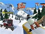 Shaun White Snowboarding Road Trip - Nintendo Wii
