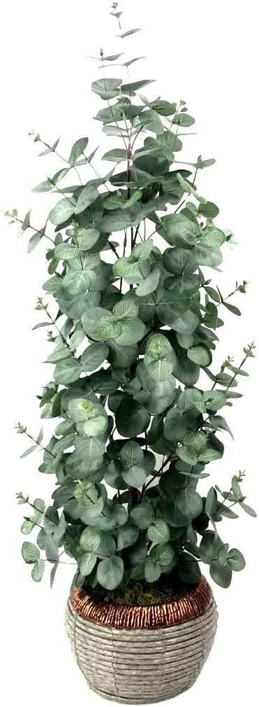 Eucalyptus Tree Silver Dollar Artificial Silk Plants Tree Fake Floor Plant in Woven Pot 36 Inch Tall for Home Office Decor-1 Pack