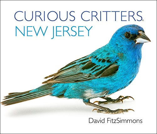 Curious Critters New Jersey (Curious Critters Board Books)