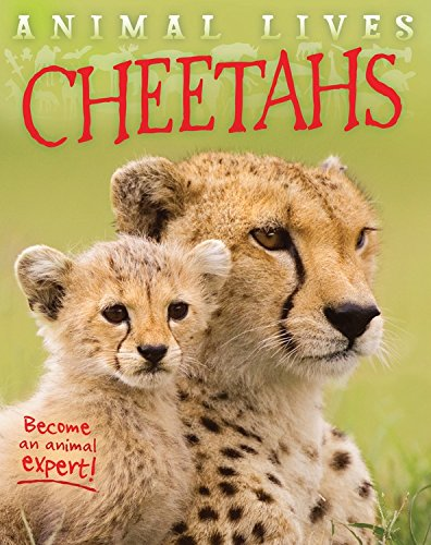 Cheetahs (Animal Lives)