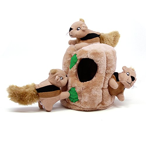 Outward Hound Hide a Squirrel Fun Hide & Seek Interactive Puzzle Plush Dog Toy, 4Piece, Medium