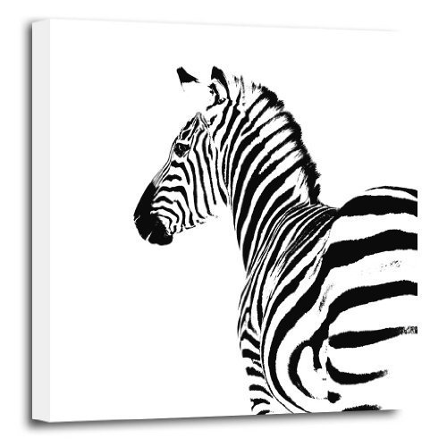 ZEBRA CANVAS POP ART ABSTRACT WILDLIFE ANIMAL PICTURE FRAMED PRINT Amazoncouk Kitchen Home