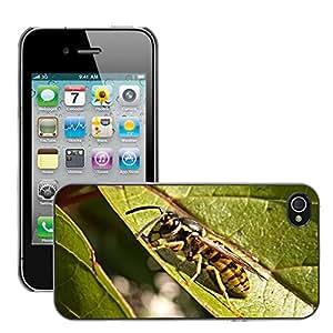 Etui Housse Coque de Protection Cover Rigide pour // M00111755 Hoja Avispa Bush Verde Detalle Macro // Apple iPhone 4 4S 4G