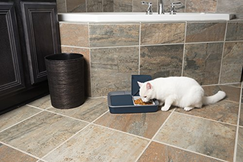 PetSafe Digital Two Meal Automatic Pet Feeder for Cats and Dogs 6
