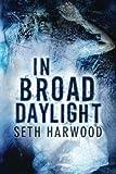 In Broad Daylight, Seth Harwood, 1611099722