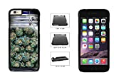iphone 6 mason jar case - Clear Weed Mason Jar Phone Case Back Cover (iPhone 6 Plus (5.5 inches screen) Black Plastic) comes with Security Tag and MyPhone Designs(TM) Cleaning Cloth