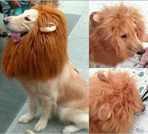 Dragonpad Pet Costume Lion Mane Wig with Ears for Dog Cat Halloween Clothes Fancy Dress up (Light Brown, (Dress Up Dogs)