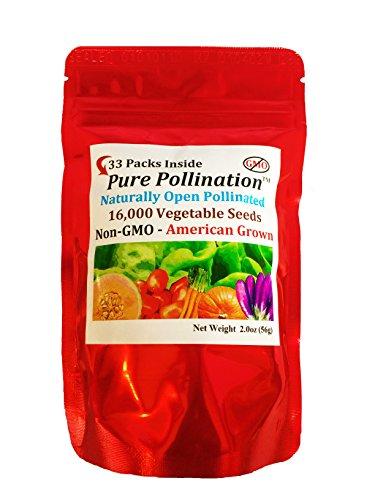 16,000 Count Seed Variety Pack 33 Fruit Vegetable Varieties (Fruit Vegetable Seeds)