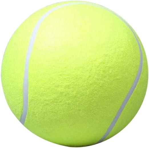 Kentop - Pelotas de tenis para perros (1 unidad): Amazon.es ...