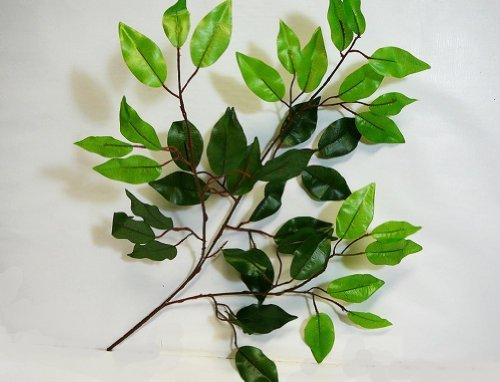 Silk Tree Branches - Artificial Silk Ficus Leaf Branches, Bundle of 6 stems, Darker green & lighter green growth on end.