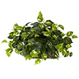 Nearly Natural 6708 15in. Pothos Ledge Plant (Set on Foam) Silk Plant