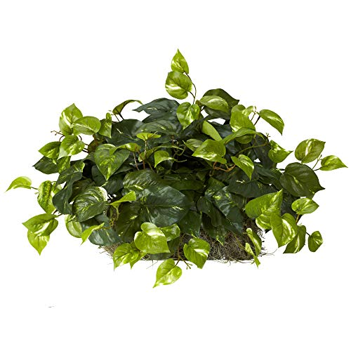 (Nearly Natural 6708 Pothos Ledge Set on Foam Decorative Silk Plant, Green)