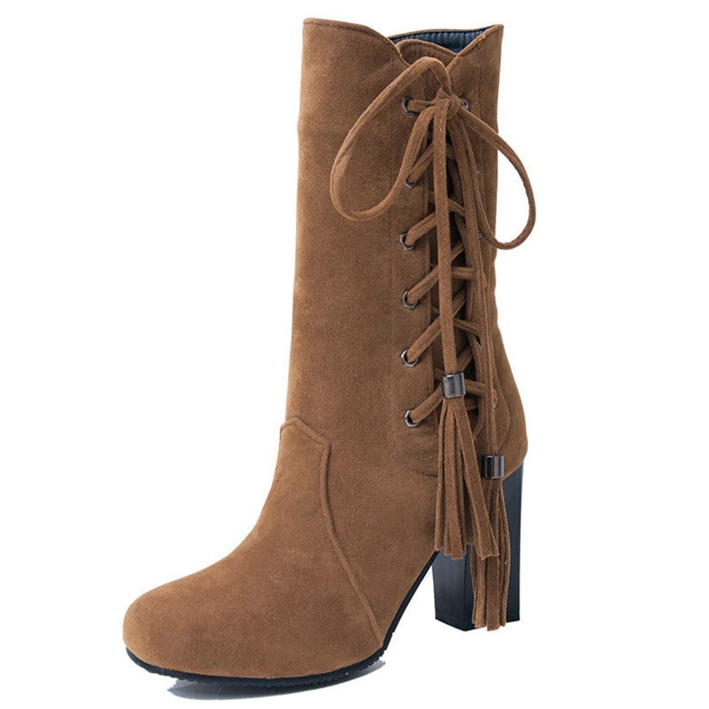 Brown Webb Perkin Women Square High Heel Winter Fringe Fashion Side Zipper Lace Up Boots Lady Suede Mid Calf Boots
