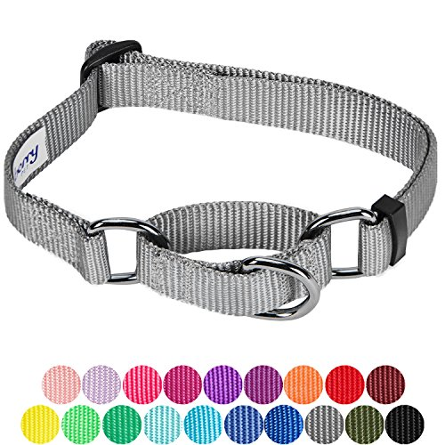Blueberry Pet 19 Colors Safety Training Martingale Dog Collar, Flint Gray, Small, Heavy Duty Nylon Adjustable Collars for (Nylon Adjustable Collar)