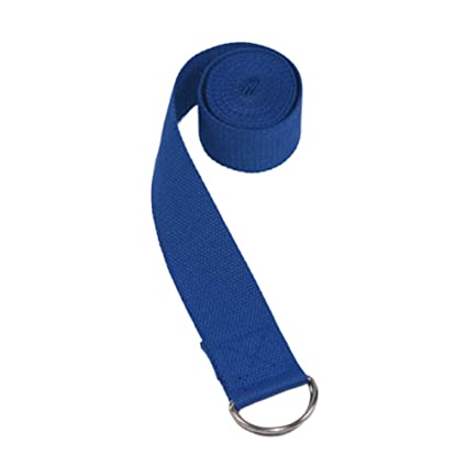 Amazon.com: Yoga Band for Stretching with D-ring, Portable ...