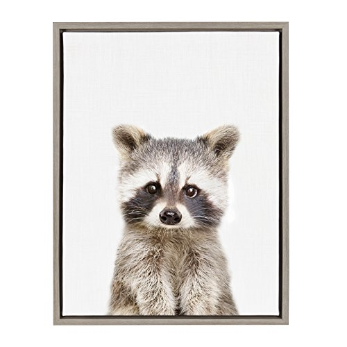 (Kate and Laurel Sylvie Raccoon Framed Canvas Wall Art by Amy Peterson, 18x24, Gray)