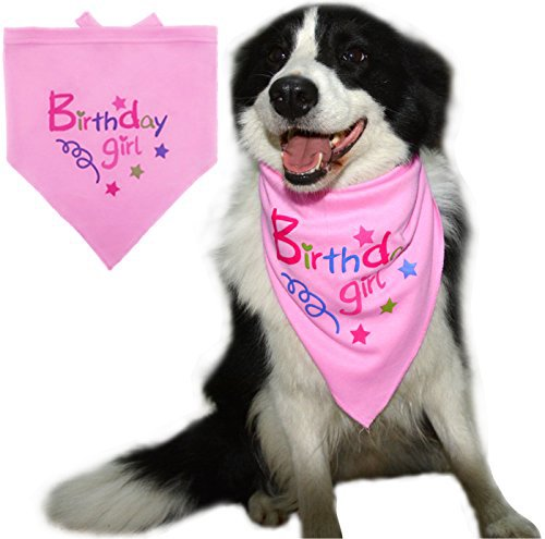 51sDmQNqesL - BINGPET Dog Birthday Bandana Pet Scarf Light Pink