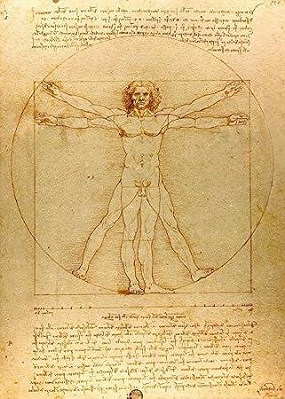 Amazon.com: Vitruvian Man - Leonardo Da Vinci. Wall Decal - Peel ...