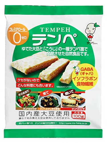 Marushin food Tempe 100g ~ 10 pieces by Marushin food
