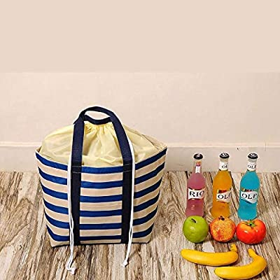 AAWWWT Blue Bunch of Ice Pack Picnic Lunch Bag, Lunch Bag, Cooling Bag, Insulated Ice Bag, Cold Storage Bag, School Outdoor Travel Picnic@10PC: Amazon.es: Jardín