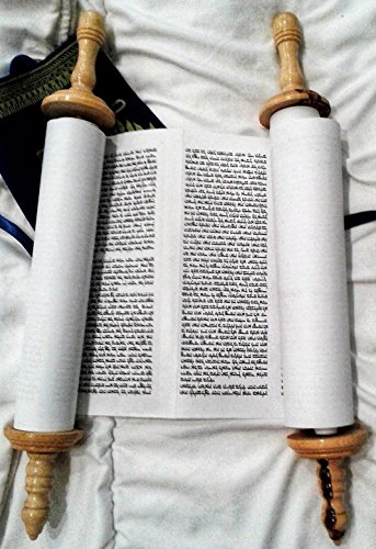 Complete Torah Scroll, TR3 - 19