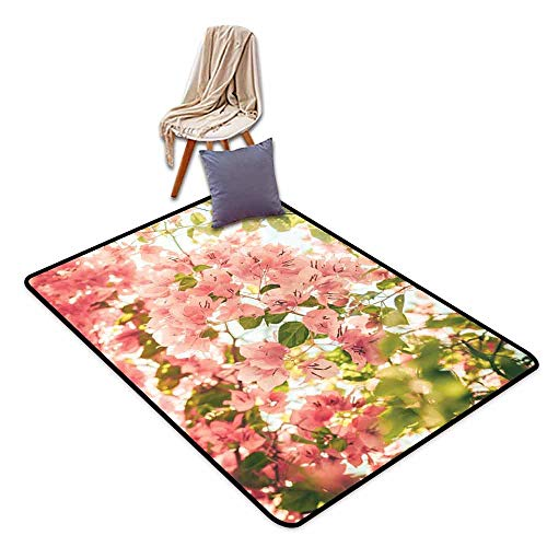 Door Rug Increase Spring Bougainvillea Flowers Branches in Sunny Summer Blossoms Nature Park View Breathability W55 xL79 Pale Pink Olive Green