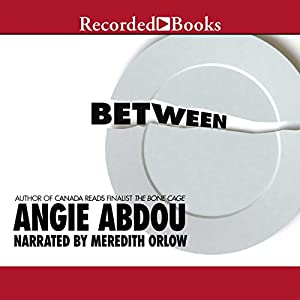 Between Audiobook