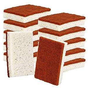 Best Epic Trends 51sEDUKXcpL._SS300_ Natural Plant Based Scrub Sponge 12 Pack, Palm Fiber Scrubbing Sponge with Non Scratch Biodegradable Compostable Sponges…