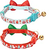 Blueberry Pet Pack of 2 Cat Collars, The Power of