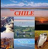Dear Chile, Jorge Lulic, 1496189736