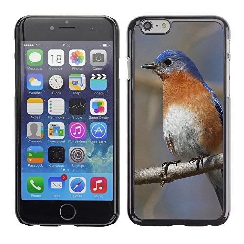 Premio Sottile Slim Cassa Custodia Case Cover Shell // F00025404 Oiseau chanteur // Apple iPhone 6 6S 6G 4.7""