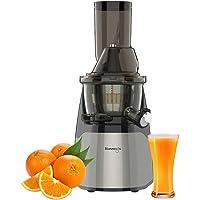 Kuvings Professional 240 Watt Cold Press Whole Slow Juicer EVO700 (Dark Silver)