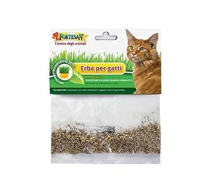 Hierba para gatos Fortesan-Rinfrescante, medicamento, auxiliar indispensable para el bienestar de Tu