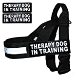 Therapy Dog in Training Nylon Harness No Pull Guide Assistance Comes with 2 Reflective Therapy Dog in Training Removable Reflective Patches. Please Measure Your Dog Before Ordering.