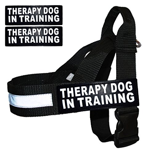Training Assistance reflective removable ordering